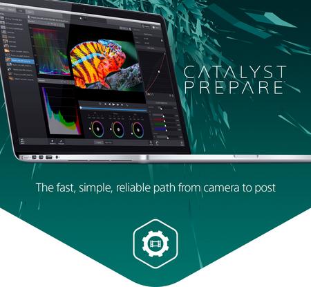 CatalystPrepare.png